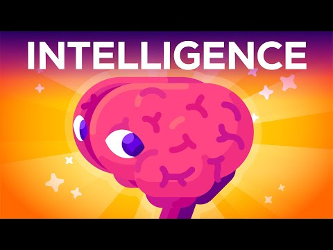 הסבר מרתק: איך אפשר לקבוע מה זה אינטליגנציה?