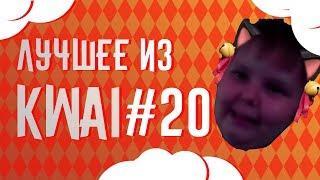 Лучшее из Kwai #20 | 12 летний бодибилдер