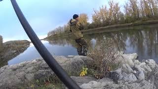Рыбалка на водоемы кемеровской области доклад