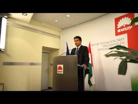 Határon túli szervezetek véleményére építve készít nemzetpolitikai programot az MSZP