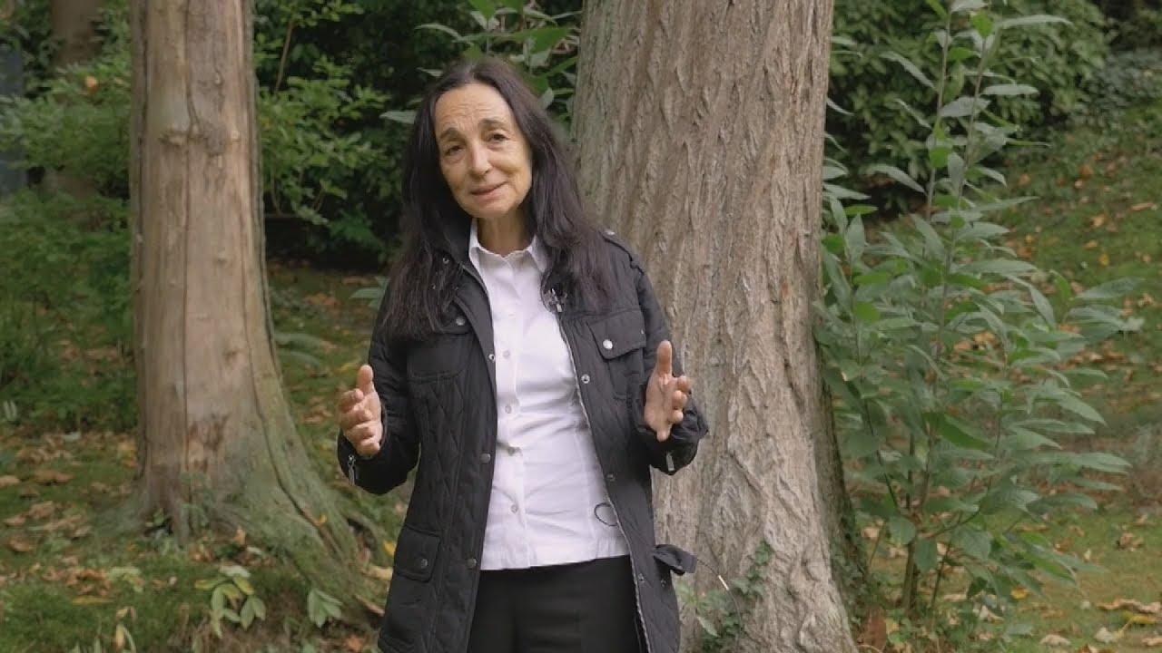 Η γλύπτρια Βάνα Ξένου μιλάει για την έκθεση της στο πολιτιστικό Ίδρυμα  Eρμιτάζ