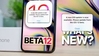 iOS 12 Beta 12! Please Update 😤