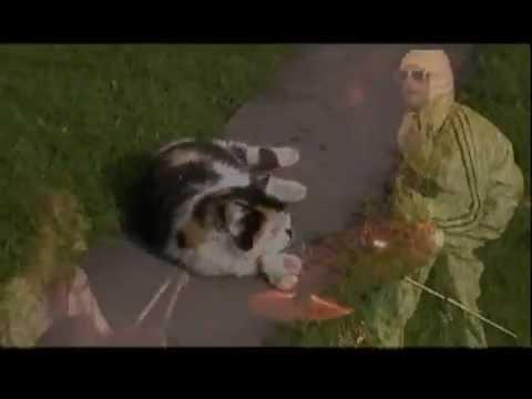 How?No!Cuc - HOW?NO!CUC - OMÁČKY Z MAČKY (videoCUCklip - verzia 2006)
