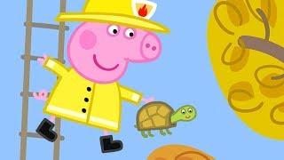 Peppa Pig Français   Compilation d