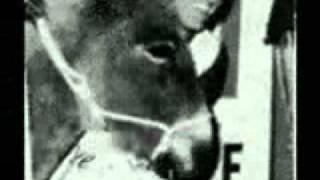 CINCINNATI RADIO HISTORY 1966 (Cyber River Multi Media)