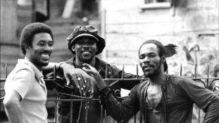 Toots & The Maytals  - Premature Dub