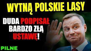 Wytną polskie lasy! Duda podpisał Lex IZERA... na początek 2 miasta a później reszta lasów
