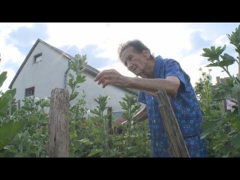 Hogyan lehet eltávolítani a helminták hatékony tablettáit