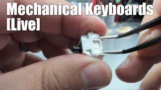 Mechanical Keyboards Live! - Switch Tuning (we're making 45g Panda-stotles) in 4K