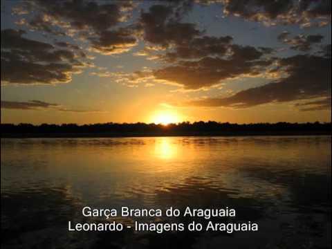 Ouvir Garça Branca do Araguaia