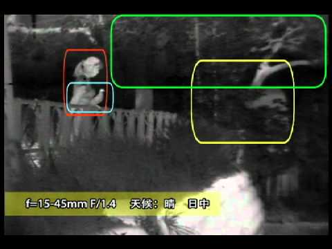 タムロン 遠赤外線レンズ サンプル動画
