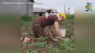 ПОКАТАЙ МЕНЯ ЛОШАДКА))))