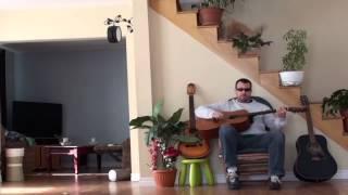 Смотреть онлайн Наглый гитарист был наказан умным котом