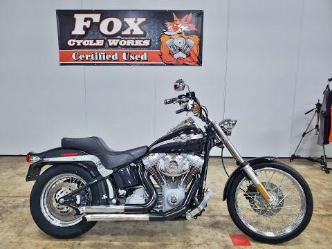 2003 Harley-Davidson FXST/FXSTI Softail®  Standard in Sandusky, Ohio - Video 1