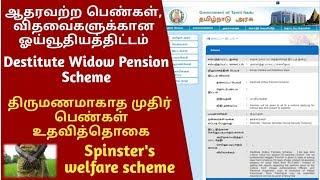 விதவைகள், ஆதரவற்ற திருமணமாகாத பெண்கள்  ஓய்வூதியம் பெரும் வழிமுறை   Destitute Women, Widow Pension