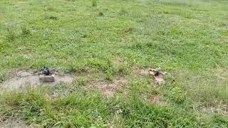 By one race drone,balapan drone race 5 ich