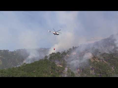 Waldbrände auf der Krim ausgebrochen [mit Video]