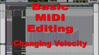 Basic Midi Editing - Tutorial - Changing Velocities of MIDI notes