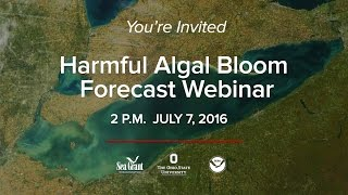 You're Invited to the 2016 Harmful Algal Bloom Forecast Webinar