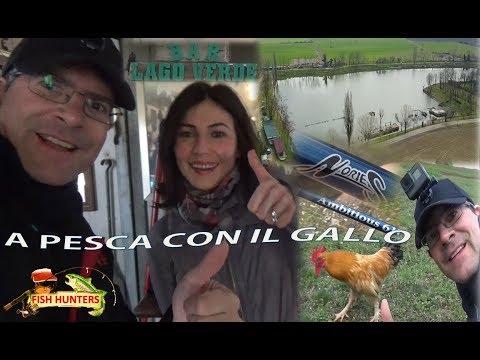 Video che pesca su un serbatoio pestovsky