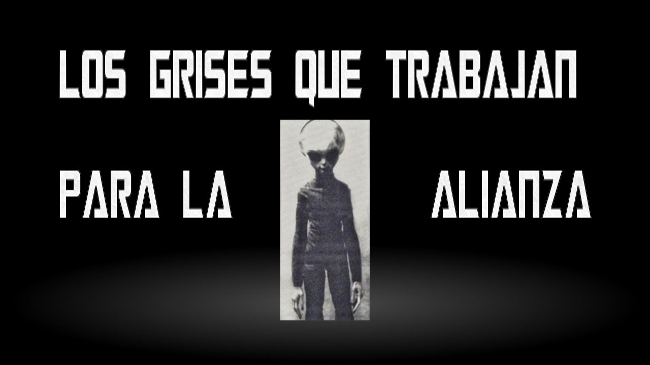 LOS GRISES QUE TRABAJAN PARA LA ALIANZA