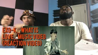 EXO-K - WHAT IS LOVE - Music Video - (Reaction Video)