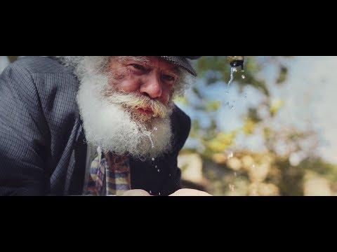 Nicolae Guta – Lacrimi de gheata Video