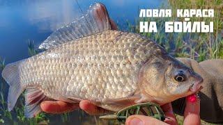 Рыбалка на дону снасти и прикормка бойлы