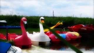 Johannes Albert 'Muskrat Susie' (Moomin Remix)