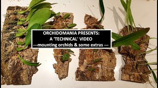 Orchidomania Presents: A Technical Orchid Video -mounting Orchids & Some Extras-