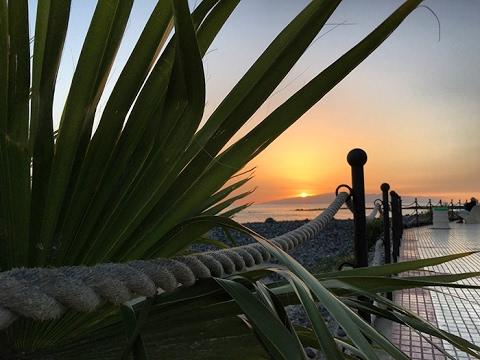 Тенерифе, Канарские острова, Испания: визы