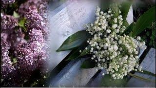 Весна и... Besame Mucho - Nicolas De Angelis