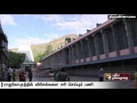 Six-more-cracks-to-be-fixed-in-Tiruvannamalai-Rajagopuram