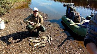 Любительская рыбалка на хариуса в коми