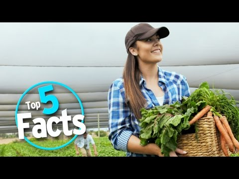 Top 5 Little Known Eco Footprint Facts