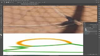 Flujo de Trabajo de Edición de Foto 360
