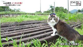 Vol.78「にゃん旅鉄道」探検にゃ♪