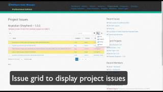 Software Issue Manager Pro WordPress Plugin – Summarize