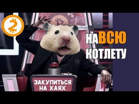Скрипт бинарных опционов pp