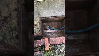 Blocked Sewer System, How To Unclog A Drain Full Of Wipes! #notflushable