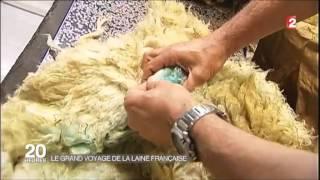France 2 : La filière laine