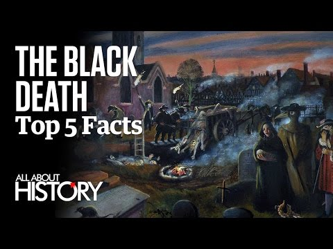 Video The Black Death | Top 5 Facts