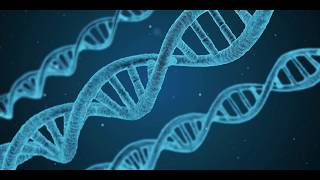 Dark DNA : The Biological Dark Matter is the Driving Force Of Evolution?!
