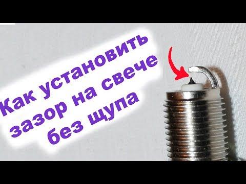 Питомники йорков днипро талисман