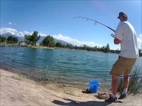 Afternoon Channel Cats: Fishing Trip Willow Pond 9/5/13