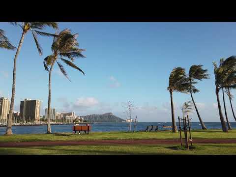 Paradise Captures –DJI_0980