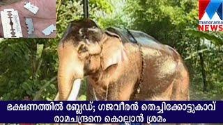 Attempt to kill elephant thechikottukavu ramachandran   Manorama News