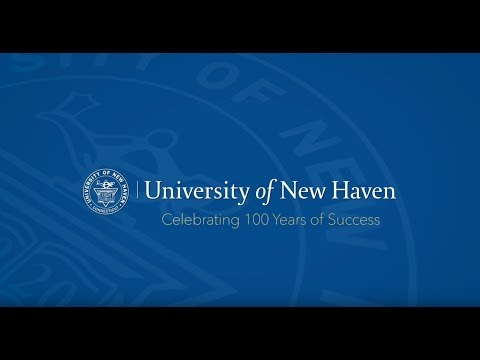 University of New Haven - video