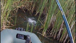 Рыбалка на кивок весной и осенью