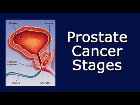 The best remedy for prostate